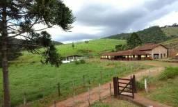 Fazenda de 100 alqueires com ótimo preço no Sul de Minas - Confira!