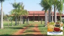 FAZENDA A VENDA EM MARACAJU - MS - DE 997 HECTARES (Agricultura)
