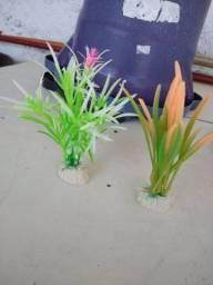 Plantinhas decorativas de aquário
