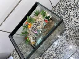 Vendo aquário Aqua terrestre semi novo