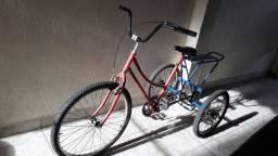 Triciclo Adulto com Garupa