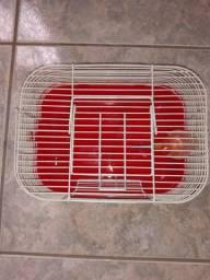 Casinha de hamster pequena 18,00 ( entrego na estação de trem de engenheiro pedreira )