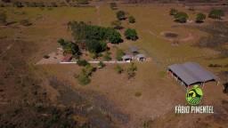Fazenda 138 ha. em Santo Antônio do Leveger - 40 km de Cuiabá