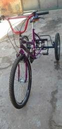 Bicicleta para passeio, e ideal para compras ou carga moderada.