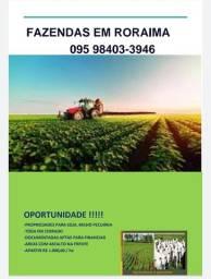 Fazenda em Boa Vista Roraima para Agricultura e Pecuária