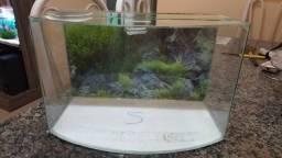 Aquario Curvo 22 litros