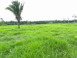 Imóveis Rurais em Rondônia. Wts. 69. *