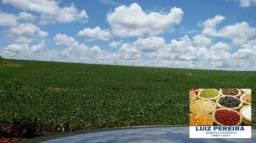 FAZENDA A VENDA EM MARACAJU - MS - DE 4.740 (Agricultura)
