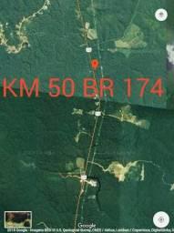 2 ótimas áreas 1 com 50 hectares e outra com 1.000 Hectares na BR 174 todos documentados.