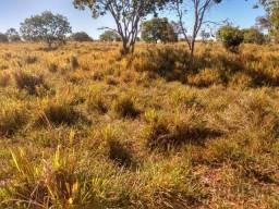 Fazenda à venda de 1084 ha - Zona Rural - Divinópolis do Tocantins/TO
