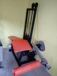 Mesa flexora com 80 kg