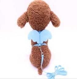 Coleira Para Cachorros Cães Pet Tamanho M Com Asas De Anjo