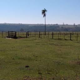 Fazenda pecuária região bauru