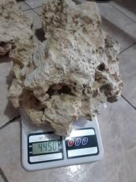 Vendo 10kg de rocha marinha