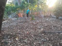 Terreno em Suape