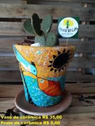 Vaso de cerâmica com cacto