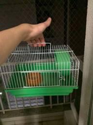 Gaiola de Hamster para locomoção nova