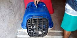 Vendo transporte para gato