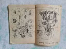 Revista Cavaleiro dos Zodíaco