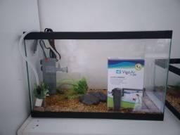 Kit aquario 20lt
