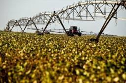 Título do anúncio: *Oportunidade-Fazenda - Lotes - Maquinas Agrícolas - Caminhões
