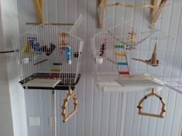 Gaiolas para aves e roedores