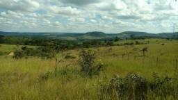 Terrenos de 20.000, 30.000 e 40.000, Muita Água, Pertinho do Asfalto e Financiado
