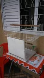 Gaiola para Papagaio