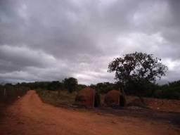 Rural no Engenheiro Navarro em Monte Alto cod: 33452
