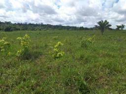 Vendo fazenda em Roraima