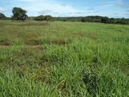 Fazenda as Margens do Rio Manso