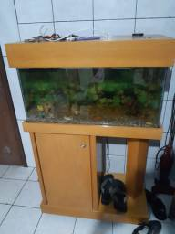 Vendo aquário com armario