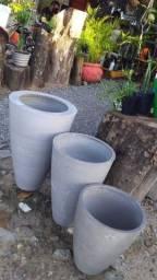 Vaso cimento planta