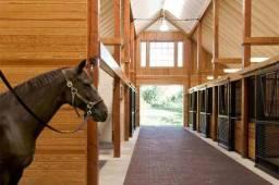 Tratador De Cavalos Com Experiencia Total
