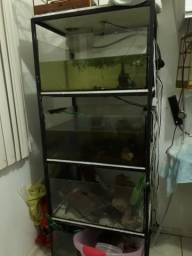 Estante com 3 aquários