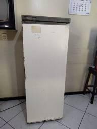 Freezer vertical (usado)