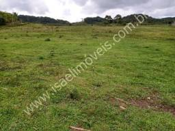 Fazenda com 115 Alq. ótima para pecuária 80 alq. de pastagem