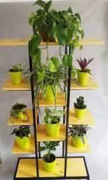 Estante plantas
