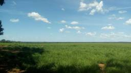 Fazenda Para Lavoura OU Pecuaria no Tocantins x Permuta Parana Fazenda