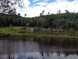 Fazenda 50 alqueires, sendo 35 Eucaliptos, Joanópolis - Permuta -F0404