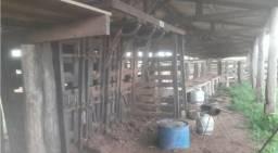 Fazenda com 3.106,00 Hect 2.200,00 aberto com 12 anos de prazo