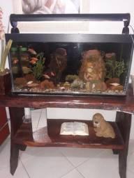 Aquario completo com aparador em madeira bruta!