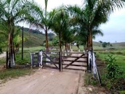 Linda Fazenda com 163 Alq. ideal para pecuária, fazenda pronta para trabalhar!