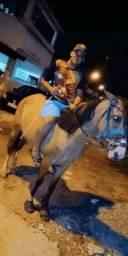 Vendo egua passada