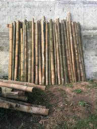 Varas de Bambu In Natura