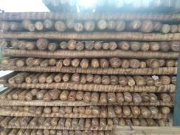 Vendo madeiras de eucalipto