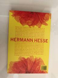 [LIVRO] Demian - Hermann Hesse