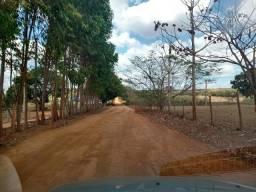 Terreno em Bom Despacho/MG 45 mil metros, Para pasto ou plantações diversas