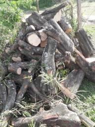 Lenha ou como preferir troncos para diversos fins principalmente decoração.