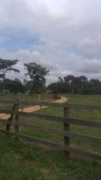 Chácara à venda, por R$ 250.000 - Zona Rural - Jaru/RO